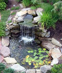 Backyard Pond And Waterfall 6