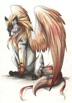 wing wolf - Google Search