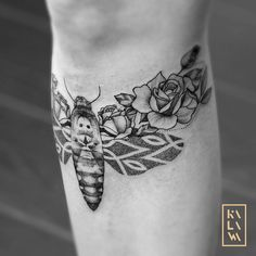 New work of my vegetal insects serie. Sphynx butterfly with floral wings. Papillon sphynx floral et graphique. Fleurs flowers. By KALAWA Tattooer - Tattoo dotwork artist from Aix-en-provence (FRANCE)