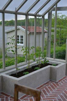 Växthusbygge del 5 | Zetas Trädgård