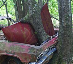 cars 200 by aswike66~Scott, via Flickr...   ................................♥...Nims...♥