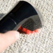 Removing pet stains on carpet.