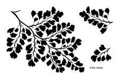 Designs by Ryn - Stencil - Maidenhair Fern, s-2 by PNWCrafts on Etsy