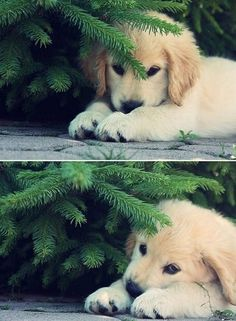 """""""You can't see me... but I can see you."""""""