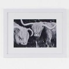 Minted for west elm - Highland Cows #West Elm