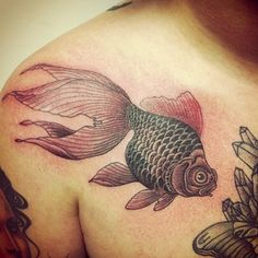 My chest in progress by my friend @jameskalinda !!!! Follow him!!!! #tattoo #tattoos #tattooitalia #goldfish #jameskalinda