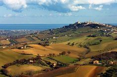 La campagna di Potenza Picena, in tutte le sue sfumature dal verde al marrone, ritratta da lontano.