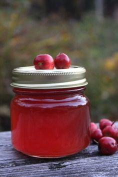Homemade Hawthorn Jelly
