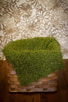 Crocheted Moss Blanket (would be great for nature shelf)