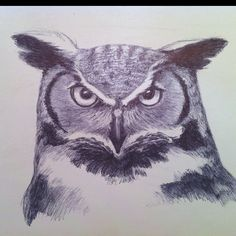Tonight's ballpoint pen sketch is of a Great Horned Owl.