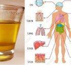 Turmeric Lemonade That Treats Depression Better Than Prozac – Natural News