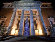 Humanos, flotantes, de libros...los Árboles Navidad se reinventan