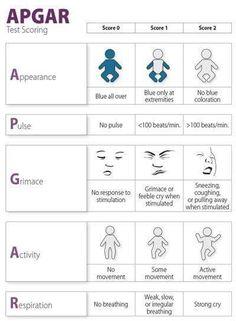 APGAR Score, overview for doctors, nurses, and their care interpreters Newborn Nursing, Ob Nursing, Nursing Tips, Neonatal Nursing, Child Nursing, Nursing Programs, Maternity Nursing, Postpartum Nursing, Nursing Cheat Sheet