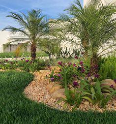 Dry Garden, Garden Yard Ideas, Florida Landscaping, Backyard Landscaping, Landscape Design, Garden Design, Garden Features, Outdoor Gardens, Outdoor Decor