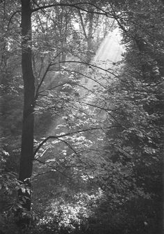 The Stag Moat at Prague Castle, 1940s, Josef Sudek.
