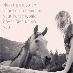 """Never give up on your horse because your horse would never give up on you."""
