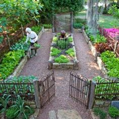 20+ Amazing Vegetable Garden Fence Ideas - Page 18 of 22