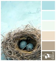 Birds Nest - Tiffany Blue, sea blue, turquoise, pastel, cream, coffee, beige, brown - Designcat Colour Inspiration Board