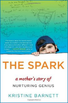Autism book  Child's high IQ  The Spark by Kristine Barnette