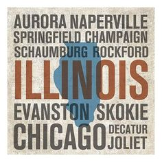 Illinois Canvas Wall Art by Michael Mullan