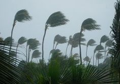How Do I Prepare My Kitchen for Hurricane Isaac? — Good Questions