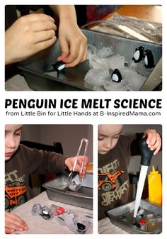 Penguin Ice Melt Science for Kids at B-Inspired Mama