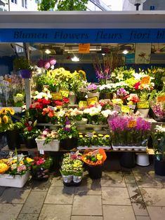 flowers, colour, pretty, market