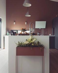 Få inspirasjon fra 10 hjem malt i Jotun Rustikk Terracotta Malta, Photo And Video, Lighting, Terracotta, Interior, Instagram, Videos, Photos, Home Decor