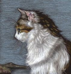 'In Remembrance of Rabbits' by Jennifer Rampling. Oil pastel portrait of a cat on dark brown card.  Wilbur is recalling his early years when he lived in the green fields of Ireland. Image size 6.1 inches across x 6.4 inches high.
