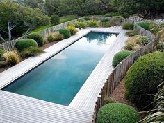 stunning landscaping around this in ground pool, surrounded by decking and a wooden fence rather than glass or metal