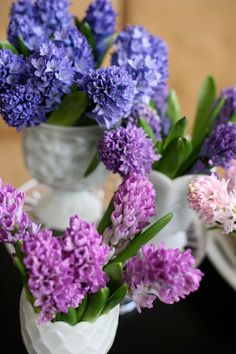 Hyacinths.  These are my favorite flowers and they smell so good.  I always know it is almost spring once I see/smell these.