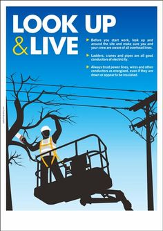 Electrical safety poster: Look-up and Live