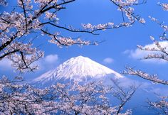 http://www.amnet-usa.com/eng/images/m_tour/complete/mt_fuji.jpgからの画像