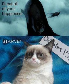 Heartless cat