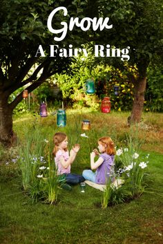 Grow A Fairy Garden Ring -- http://www.hgtvgardens.com/family-gardening/grow-a-fairy-garden-ring?soc=pinterest