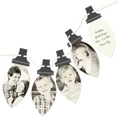 Picture Perfect Lights Photo Christmas Cards