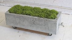 [gallery You have a hobby to collect some nice plants, so you must need some planter boxes to grow your plants. There are so many planter boxer that can be applied anyway, but in this case you have to have such a concrete planter boxes for outdoor plants. Concrete Planter Boxes, Trough Planters, Cement Planters, Concrete Garden, Concrete Projects, Flower Planters, Diy Planters, Backyard Projects, Garden Planters
