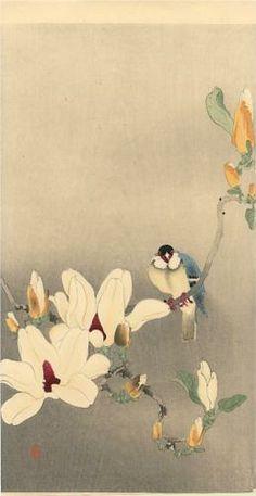 Blue Bird and Magnolia - Ohara Koson