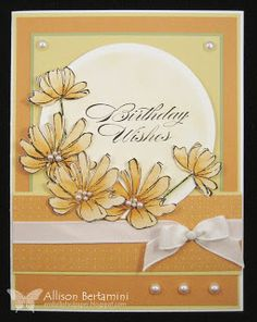 Embellished Paper: Birthday Wishes CASE, fast and fabulous, bring on the cake, stampin up