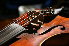 $50 Reward for Looking for Old Violins Any Condition