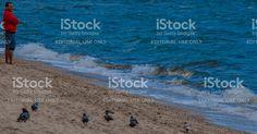 Perquê praia em Ilhabela, Brasil, dia ensolarado e quente. foto royalty-free