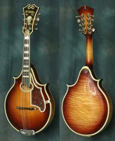 D'Angelico mandolin.Exquisite! Guitar Collection, Guitar Shop, Mandolin, Musical Instruments, Acoustic, Beautiful, Instruments, Guitar, Music Instruments