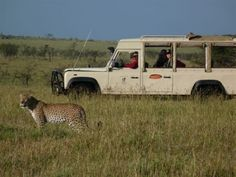 Amy attended kindergarten in Kenya... I want to ride in the high jeep and enjoy a safari in Kenya one day.