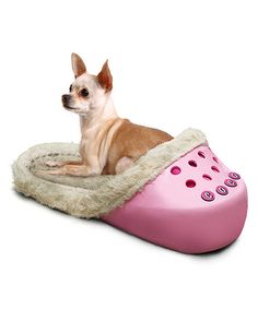 Pets will love keeping comfy and cozy in this snuggly and stylin' shoe-shaped bed. With a lightweight base and a built-in bumper headrest, this bed is perfect for keeping small and medium-size pets warm in the winter and cool in the summer. Plus, it even comes with stickers and prongs to attach a pet's name!Includes pet bed and name kit (4 packs of stickers & prongs)