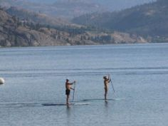 Stand up Paddle Boarding has becoming a hugely popular activity on Okanagan Lake Things To Do In Kelowna, Sonora Desert, Western Canada, Paddle Boarding, Wildlife Photography, Canoe, British Columbia, Mountain Biking, Lakes