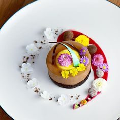 Chocolate Mocha Mousse, Passion Fruit Brûlée, Raspberry Kirsch Honey Truffles, Chocolate Covered Hazelnuts