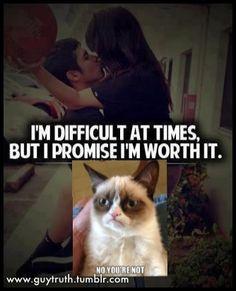 Not worth it says Grumpy Cat