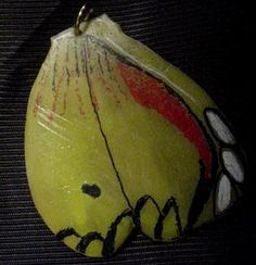 Wounaan Butterfly Tagua Pendant Carving-Panama 3.51098
