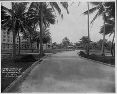 Hotels - Royal Hawaiian - 1927 Pink Palace, Hawaiian, Sidewalk, Hotels, Country Roads, Side Walkway, Walkway, Walkways, Pavement