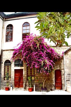 Damascus, syria where the oldest places told you a lot of stories The Beautiful Country, Beautiful Places, Syria Country, Syria Before And After, Save Syria, Aleppo, Old City, Old Town, Middle East